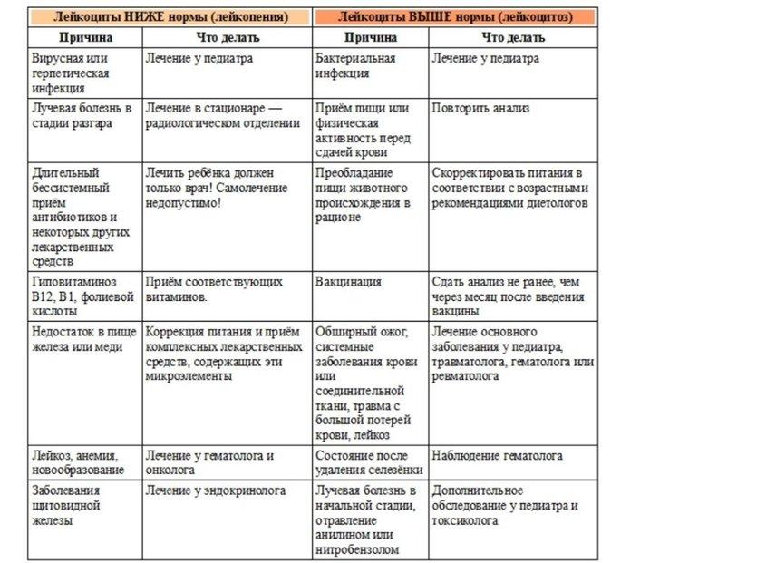 Онлайн расшифровка результатов клинического анализа крови